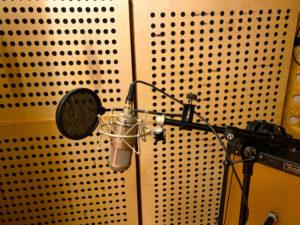 Mikrofon vor Lochplattenschwingern